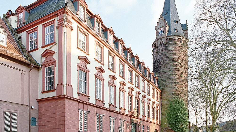 Schloss_Erbach_Schlosshofseite-Copyright_Michael_C._Bender
